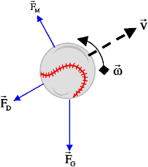 Ask the physicist incidentally by rise or fall i am talking about the direction of the acceleration so a ball which is thrown at an angle above the horizontal is obviously ccuart Gallery